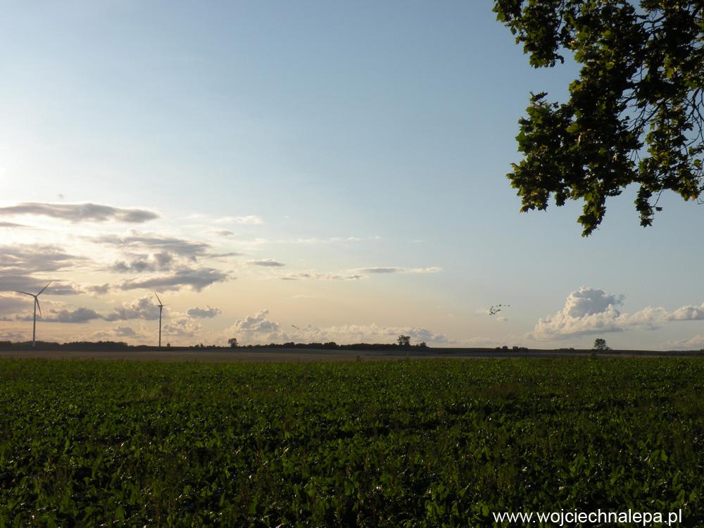 Siłownie wiatrowe + żurawie. Woj. warmińsko-mazurskie.