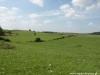 Rezerwat Suśle Wzgórza.